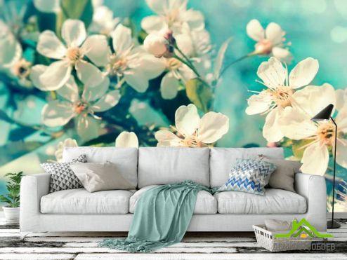 Вишня Фотообои Цветы вишневые в вазе