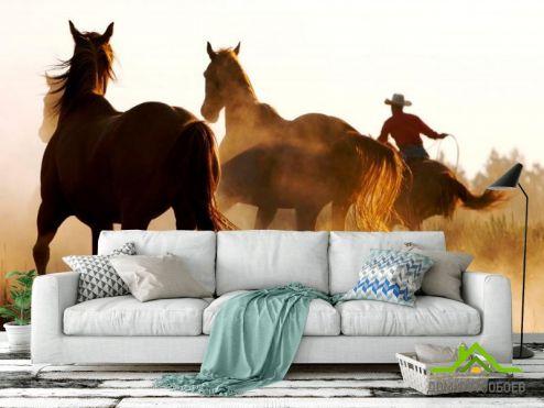 обои Лошади Фотообои Лошади в поле