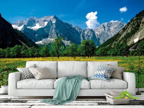 обои Горы Фотообои Цветочный луг горы