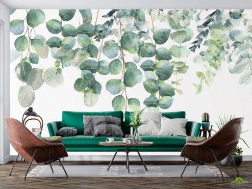 в скандинавском стиле Фотообои Эвкалиптовые листья