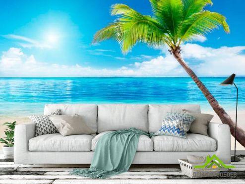 обои Пляж Фотообои Пляж, пальма, штиль
