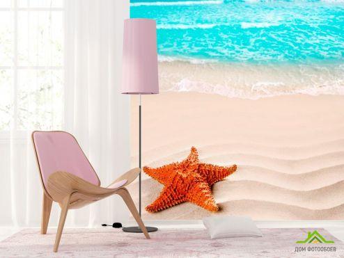 обои Рыбы и море Фотообои Морская звезда