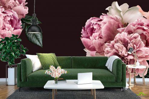 Пионы Фотообои Розовые пионы