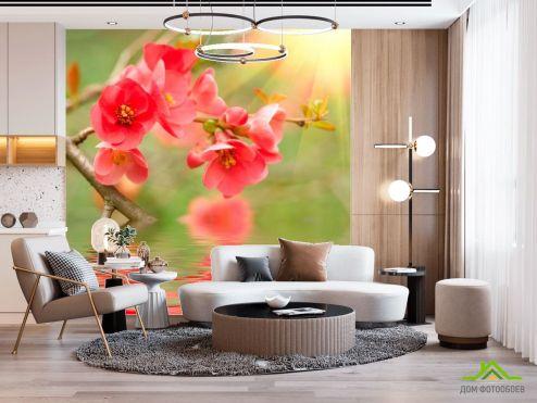 Фотообои Кипарис по выгодной цене Фотообои Кипарис нежно-розовый