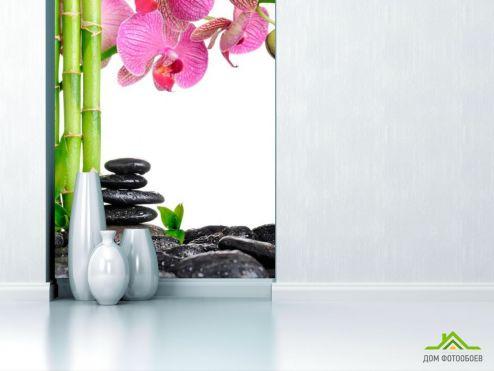 Бамбук  Фотообои Бамбук и орхидея