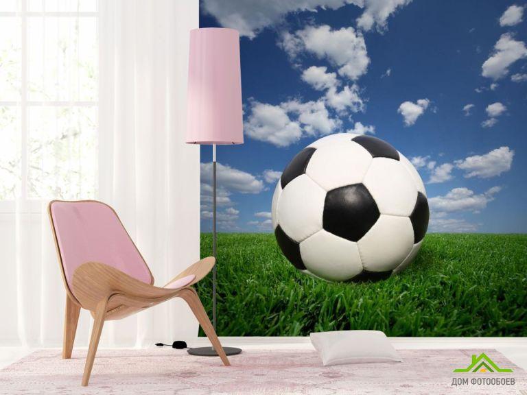 Фотообои мяч на траве
