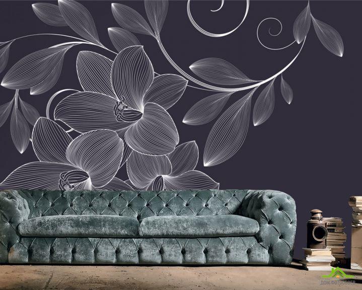 Фотообои Векторные узоры цветы