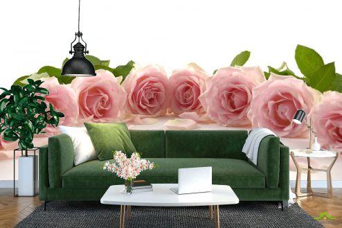 Розы Фотообои розовые розы по кругу