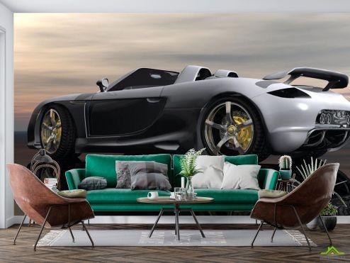 Транспорт Фотообои Porsche Carrera GT