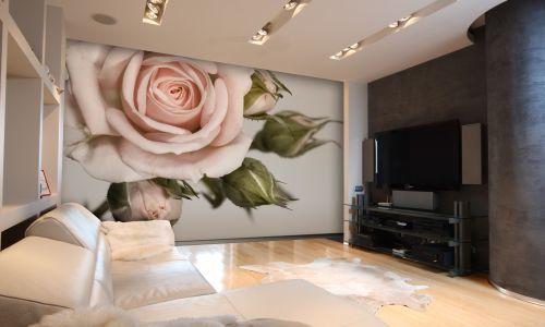 Фотообои в интерьере  - Фотообои Кремовые роза и бутоны