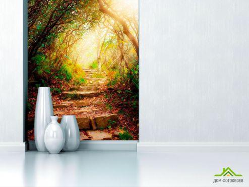 обои Природа Фотообои Ступеньки, лес