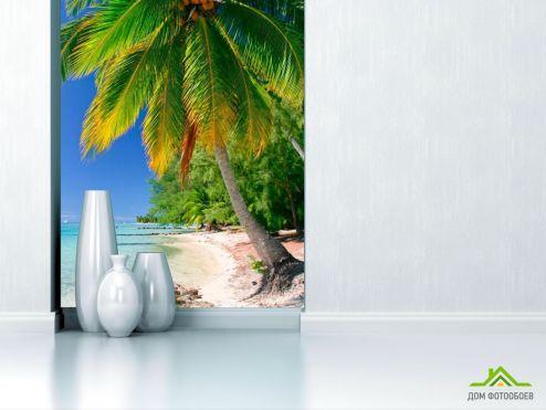 обои Пляж Фотообои Пальма с кокосами