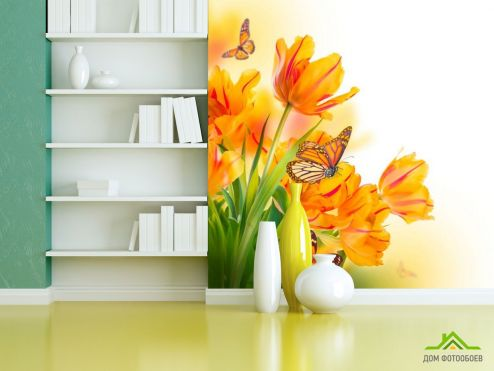 обои Цветы Фотообои Тюльпаны