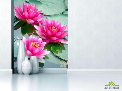 обои Цветы Фотообои Кувшинки с листьями