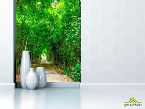 обои Природа Фотообои Бамбук, дорга, плита