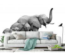 Фотообои семья слонов