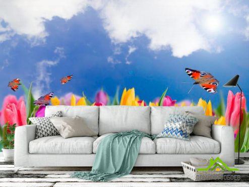 обои Цветы Фотообои Тюльпаны и бабочки