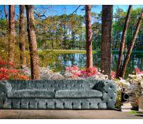 Фотообои Сосновый лес, вода