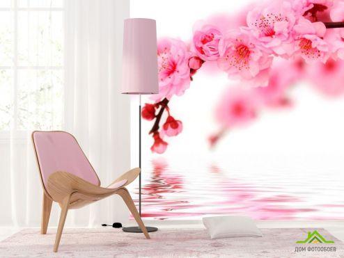 обои Вишня Фотообои Вишня в цвету