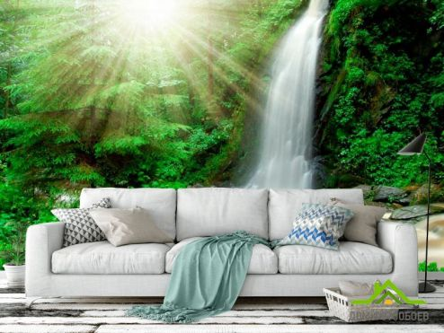Водопад Фотообои Солнце, ручей  купить