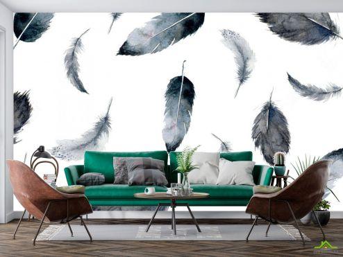 Черно-белые  Фотообои перья воздушные