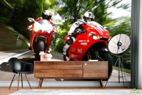 Мотоциклы Фотообои Мотогонки
