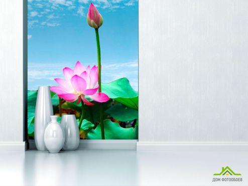 Кувшинки Фотообои Бледно-розовые кувшинки