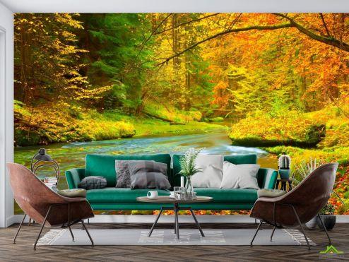 Фотообои Природа по выгодной цене Фотообои яркий осенний лес