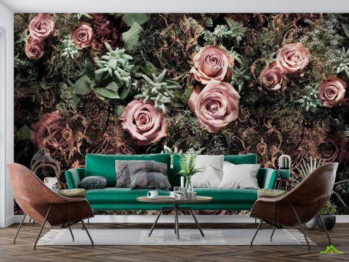 Цветы Фотообои Цветы купить