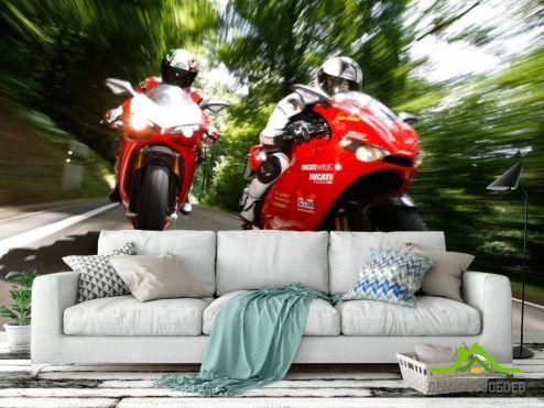 обои Мотоциклы Фотообои Мотогонки