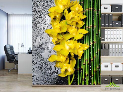 Орхидеи Фотообои желтая орхидея с бамбуком и водой