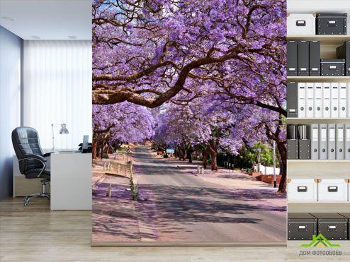 Фиолетовые обои Фотообои Цвет, дорога