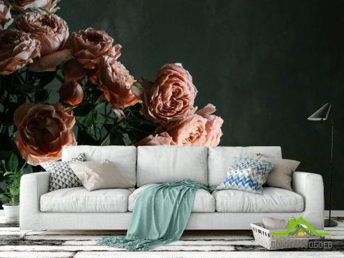 обои Цветы Фотообои Винтажные розы