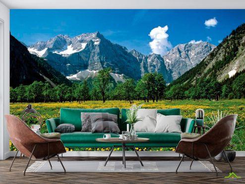 Природа Фотообои Цветочный луг горы