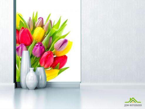 Тюльпаны Фотообои разноцветные тюльпаны с каплями купить