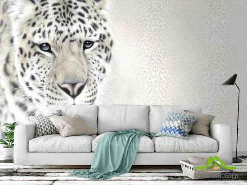 Животные Фотообои Фотообои Чб тигр