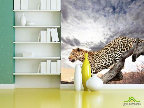 Гепарды Фотообои Гепард на дереве