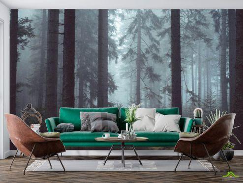 Фотообои Природа по выгодной цене Фотообои Серый лес