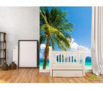 Фотообои пальма на берегу моря