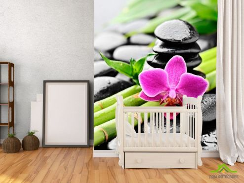обои Цветы Фотообои Бамбук, камни, орхидея