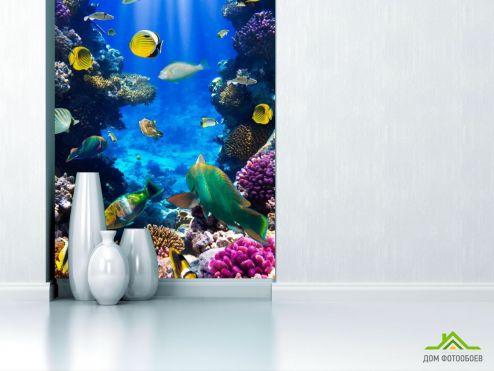 Рыбы и море Фотообои Косяк рыбок в море