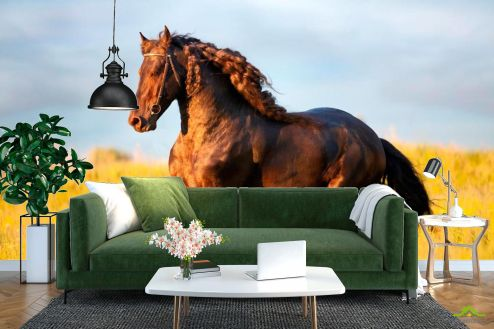 Лошади Фотообои Бегущий мустанг