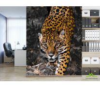 Фотообои леопард крадётся