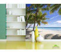 Фотообои тенек от пальм на берегу моря