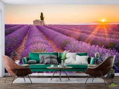 в стиле прованс Фотообои Тосканский прованс купить