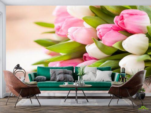 Тюльпаны Фотообои белые и розовые тюльпаны