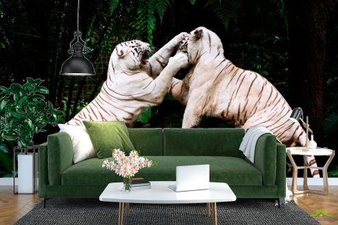 Тигры Фотообои Драка белых тигров купить