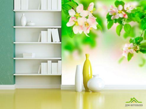 обои Абрикос Фотообои Абрикосовые цветы