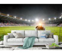 Фотообои мяч на футбольном поле
