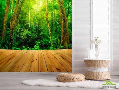 обои Природа Фотообои Доски, лес